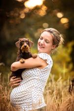Hund, Hundeshooting, Fotoshooting Hund Hessen, Hundeshooting Frankfurt, Hund Action, Hund Portrait, Tierfotografie, Tierfotografie Hessen, Hundefotografie Bad Homburg, Dackel
