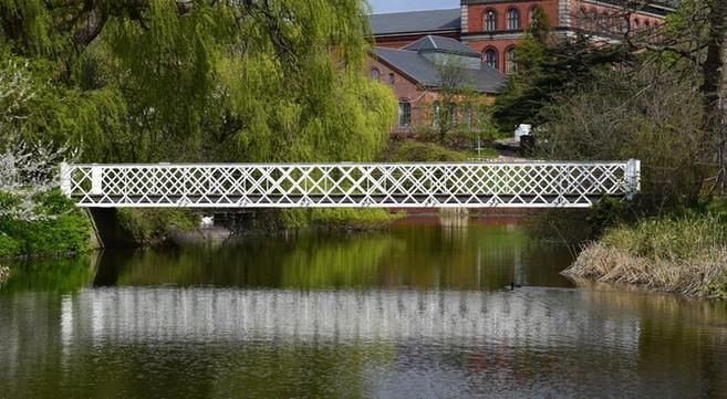 Bro i Botanisk have