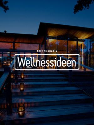 2013_Wellnessideen_thumbnail.jpg