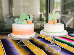 Portfolio-Cactus-Cake