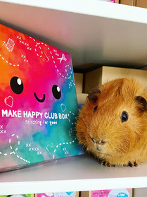 The Make happy club box #1 (WARNING CONTAINS SPOILERS)