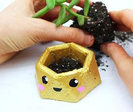 Concrete planter cute