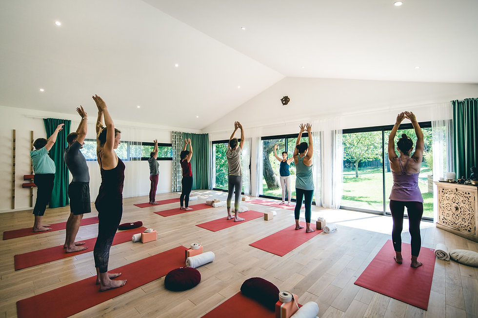Yoga Lumière _ Actualité _ crédit photo