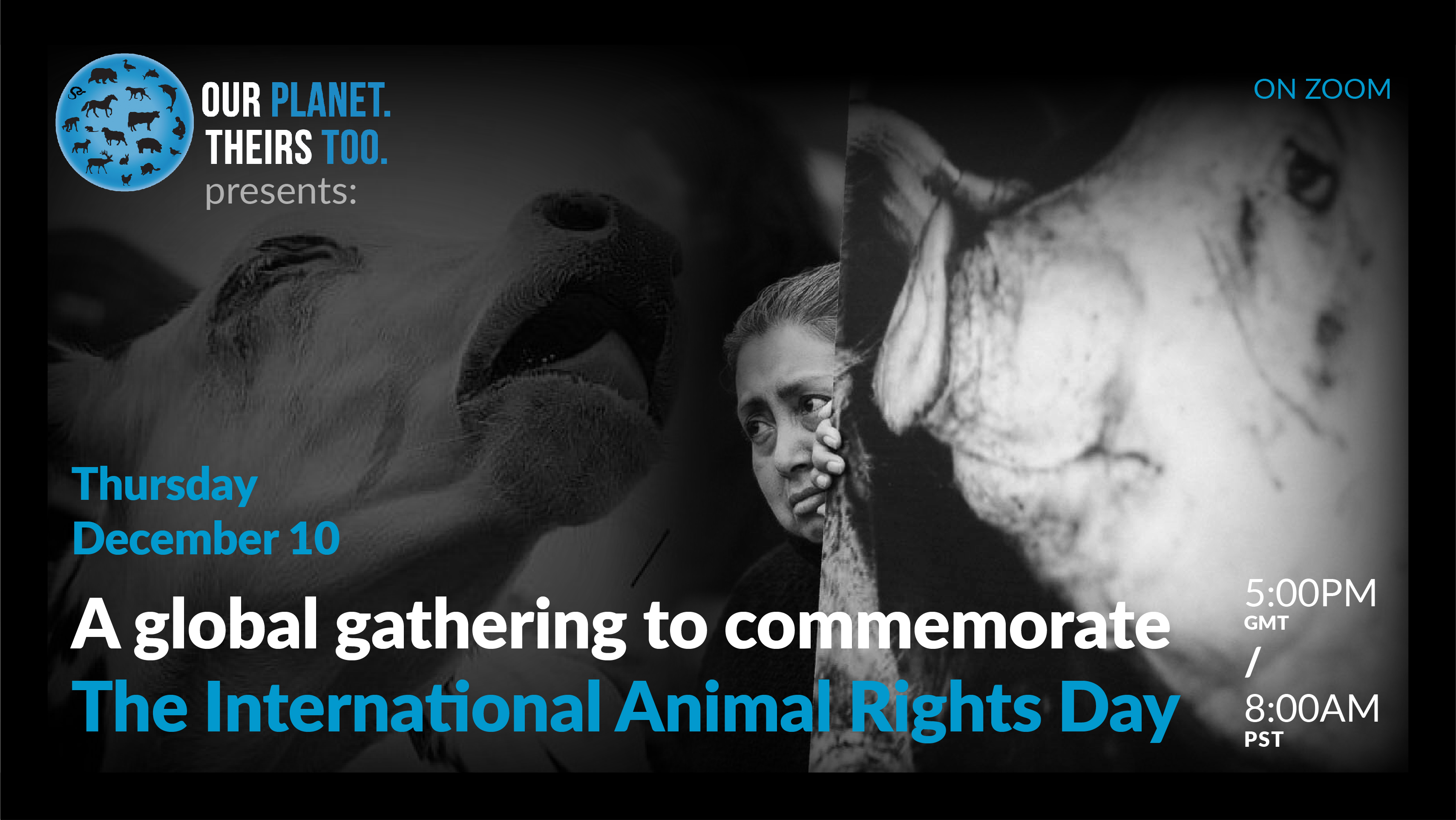 Event-International Animal Rights Day