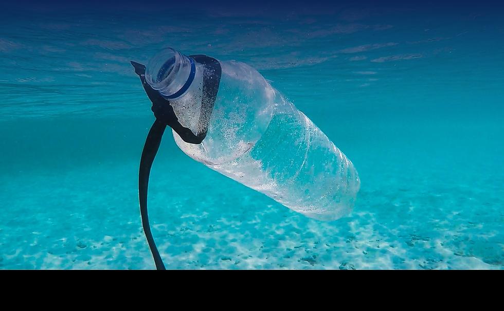 plastic bottle-08.png