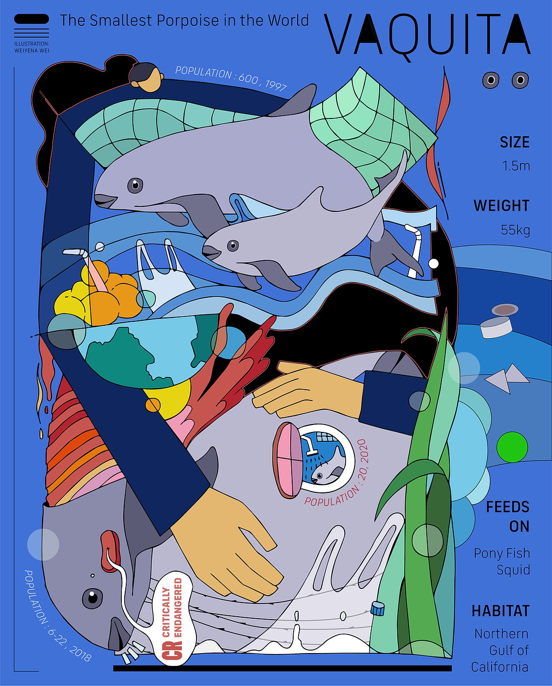 Vaquita Poster.jpg