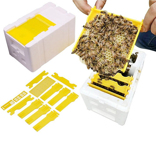 Queen Bee Rearing Mating Beehive Pollination Bees Hive Box -Beekeeping Tools