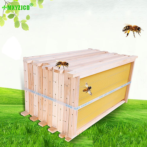 Bee Hive with 5 Piece Finished Nest Box High Frame -Beekeeping Tools