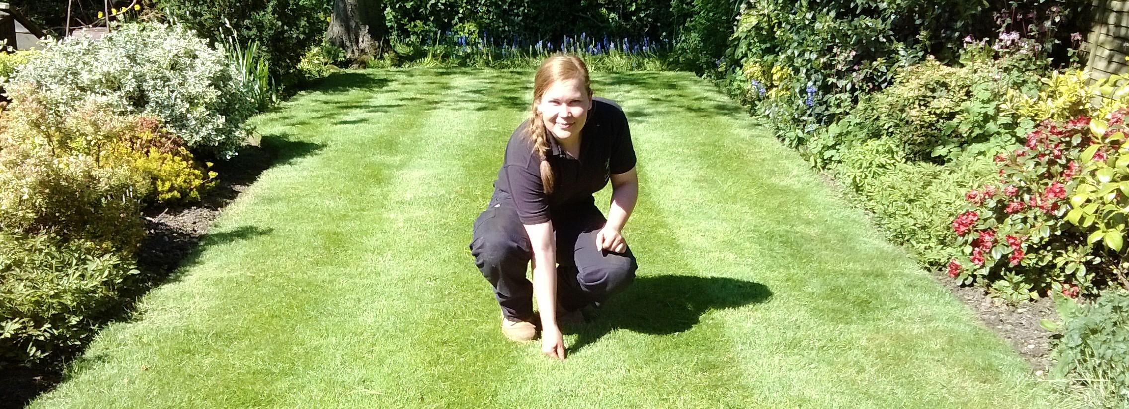 Lawn Assessment