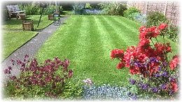 cutting,Green Frog Landscaping, Bolton, Atherton, Farnworth, Horwich, Leigh, Warrington, Wigan, Manchester, Hale, Sale, Wilmslow, Westhoughton, garden, maintenance, gardener, lawn, care, treatment, weed, feed, scarifying, scarify, aeration, rent, fish, tan