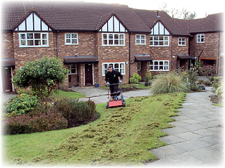 scarification, moss,Green Frog Landscaping, Bolton, Atherton, Farnworth, Horwich, Leigh, Warrington, Wigan, Manchester, Hale, Sale, Wilmslow, Westhoughton, garden, maintenance, gardener, lawn, care, treatment, weed, feed, scarifying, scarify, aeration,