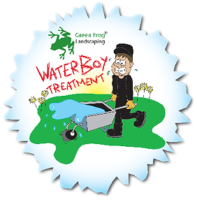green frog landscaping,Green Frog Landscaping, Bolton, Atherton, Farnworth, Horwich, Leigh, Warrington, Wigan, Manchester, Hale, Sale, Wilmslow, Westhoughton, garden, maintenance, gardener, lawn, care, treatment, weed, feed, scarifying, scarify, aeration,