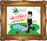 dry patch,Green Frog Landscaping, Bolton, Atherton, Farnworth, Horwich, Leigh, Warrington, Wigan, Manchester, Hale, Sale, Wilmslow, Westhoughton, garden, maintenance, gardener, lawn, care, treatment, weed, feed, scarifying, scarify, aeration, rent, fish,