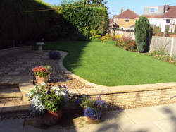 Weed Free Lawns