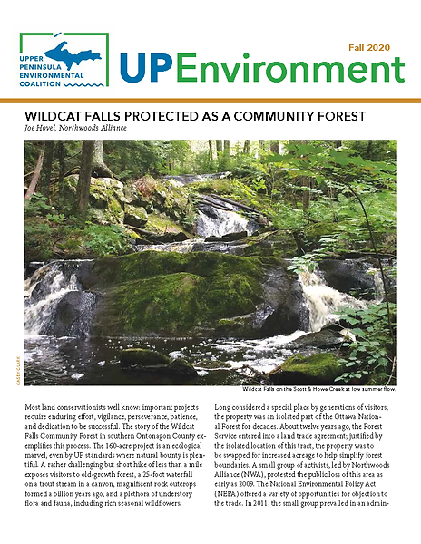 upec_newsletter_fall_2020_web_cover.png