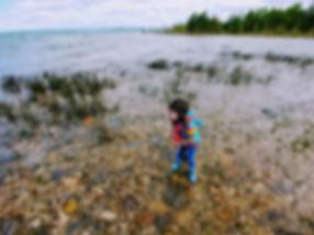 Drummond-Island-_-Brian-Schmidt.jpg