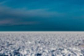 Snowscape _ Jennifer Pesola.jpg