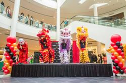 Mall Lion Dance