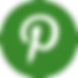pinterest-green_edited_edited.png