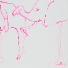 Elephants in Love 10