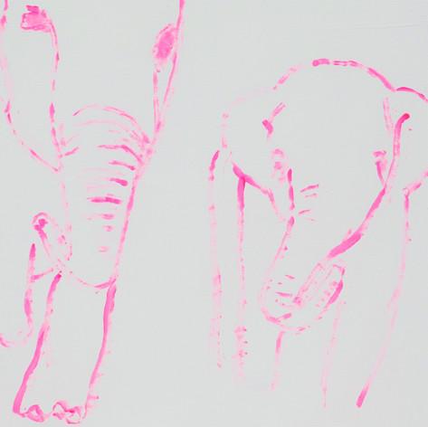Elephants in Love 9