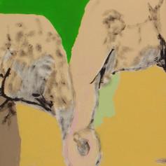 Elephants in Love 4