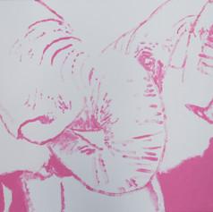 Elephants in Love 5