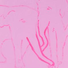 Elephants in Love 16