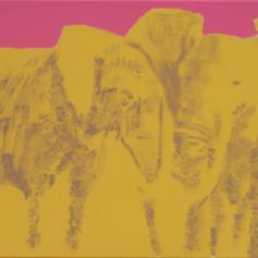 Elephants in Love 2