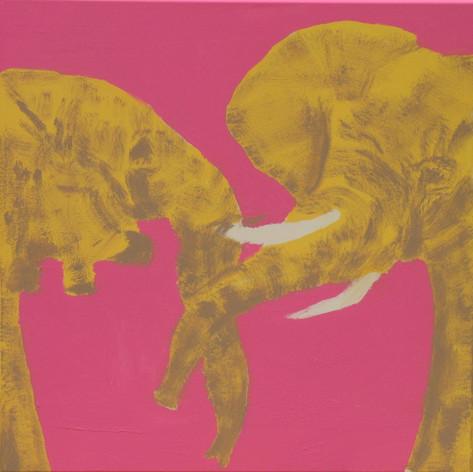 Elephants in Love 3