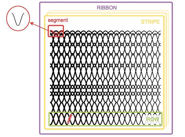 Ribbon_struct.jpg
