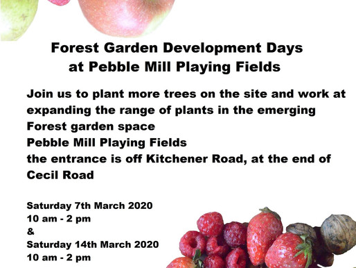 Forest Garden Development at Pebble Mill Playing Fields 7th and 14th March