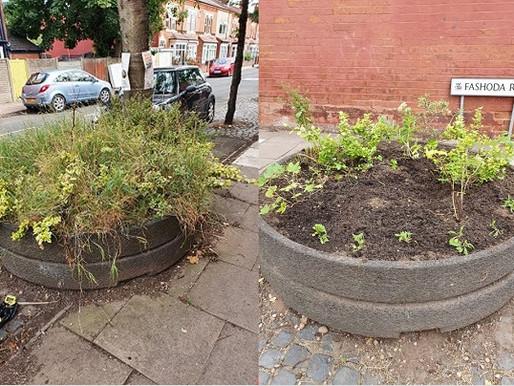 Renovating the planters