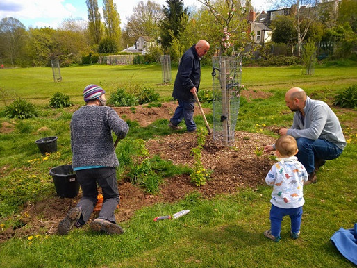 Forest Gardening Education Day