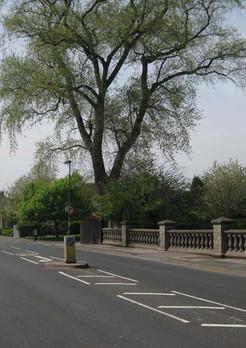Dogpool Lane Bridge