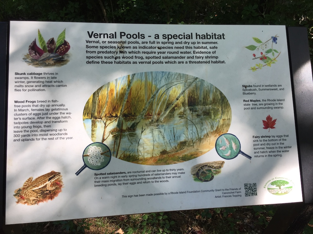 Vernal pool sign in situ