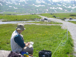 Fran on the alp sketching