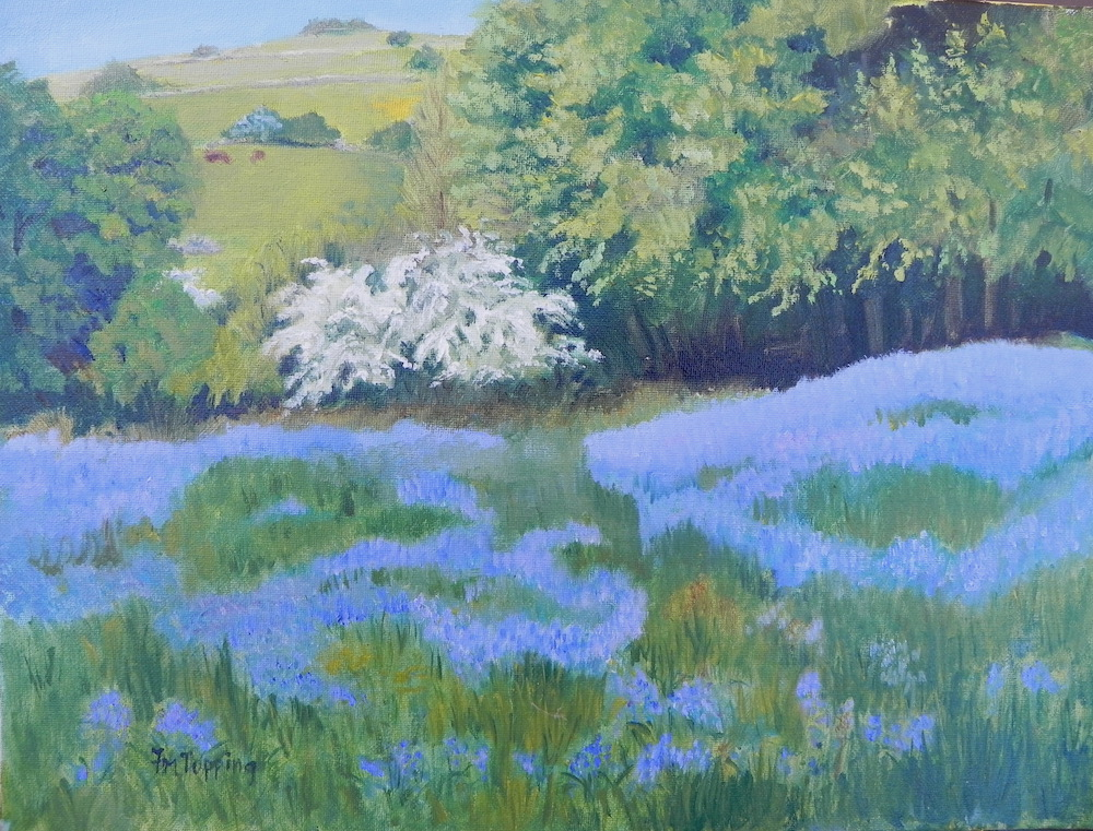 Bluebells and hawthorn