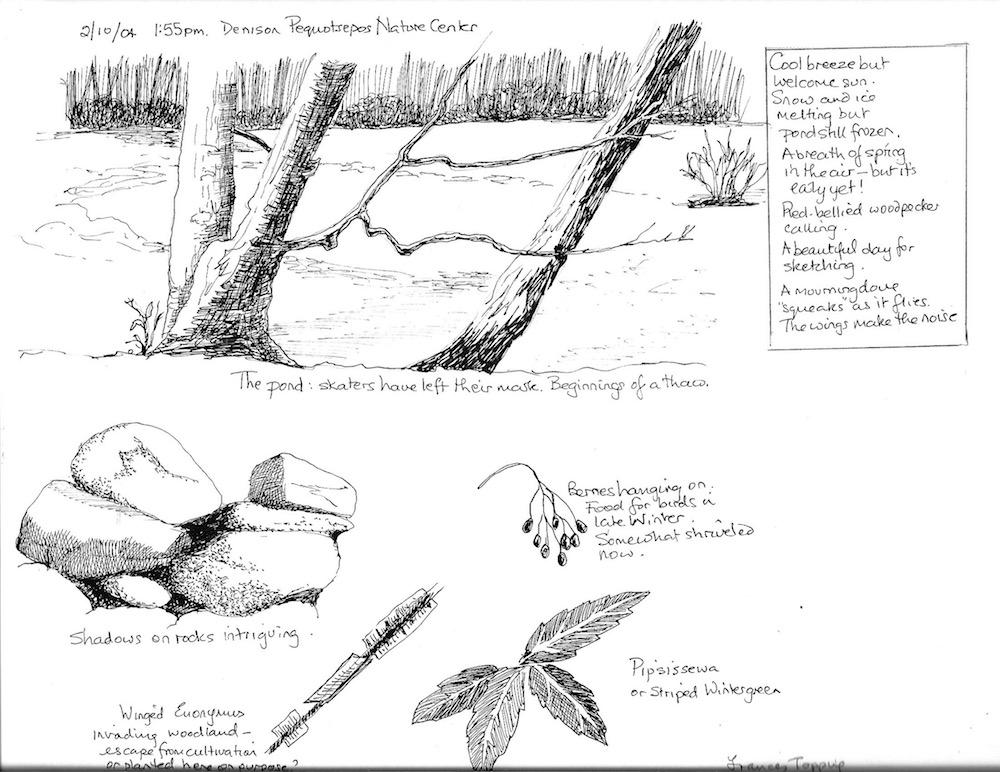 DPNC sketch page