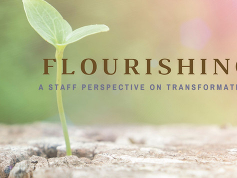 Flourishing. A Staff Perspective on Transformation