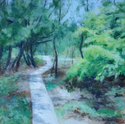 Beach Trail - Joyce Millman