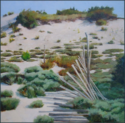 Weathered Fence on the Dune 29x29