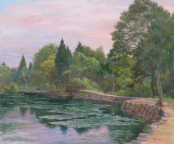 朝のいもり池