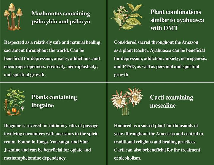 plants and fungi list copy.jpeg