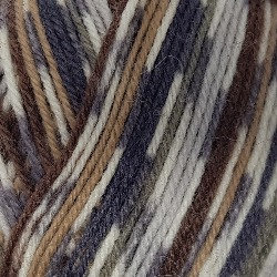 WYS Signature 4 Ply Country Birds Owl 877