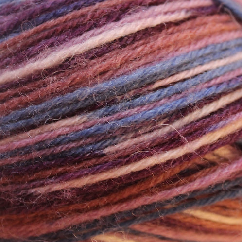 James C Brett Funny Feetz Sock Yarn FZ03