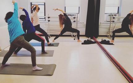 Yoga/Wellness Experience