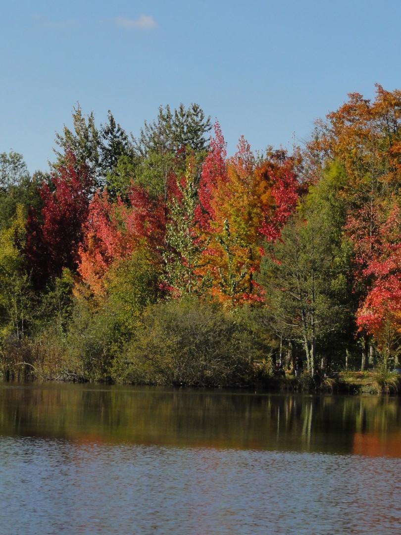L'automne camping La Grande Sologne