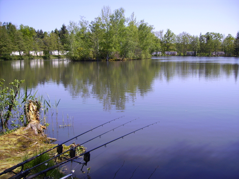 Pêche gratuite dans l'étang