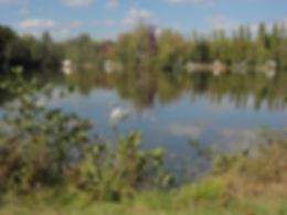 vue dur l'île située au centre de l'étang